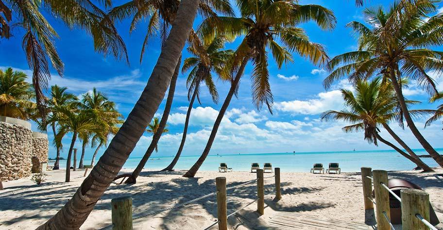 Key West USA Badeferien Palmen Strand