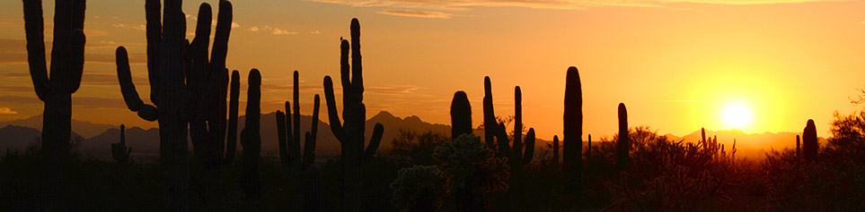 Top Hotel in Phoenix buchen